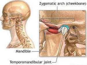 Temporomandibular Joint picture